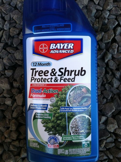 The most useful Bayer product for bonsai