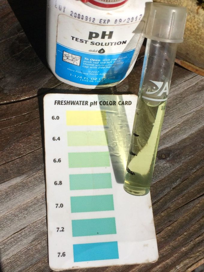 One Essential to Plant Health: Water pH