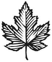 maple-leaf-icon