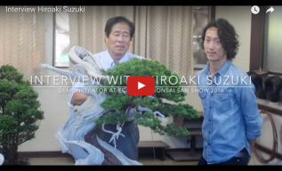 Interview with Shinji Suzuki'sSon–