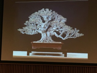 Thoughts about Bonsai in Taiwan-