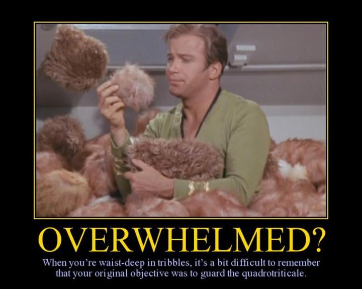 2014698506-overwhelmed