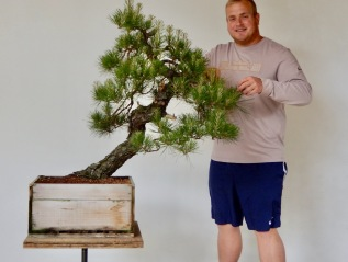 Unusual Pine to Decandle:Loblolly